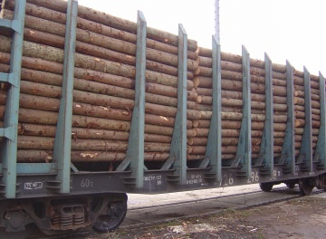 Timber cargo transportation by railway in open-top wagons